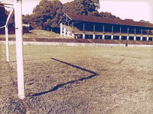 parque-amazonense-campo